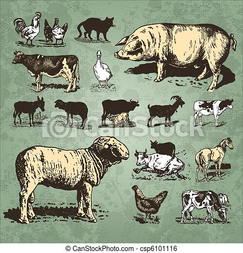 tanya, szüret, állhatatos, állatok, (vector) - csp6101116