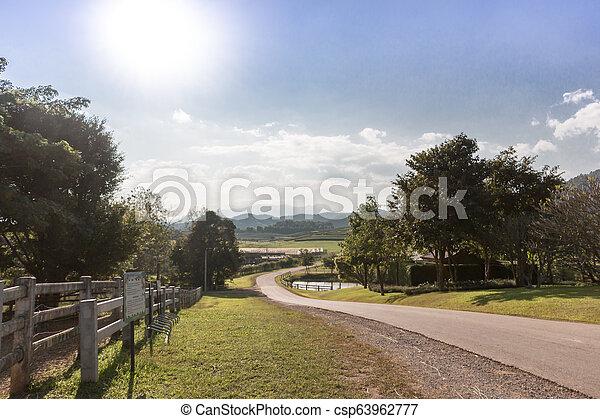 tanya, tea megművel, út - csp63962777