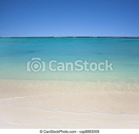 tengerpart, tiszta égbolt, víz, kék - csp8883009