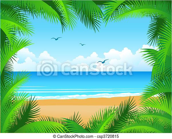 tropical tengerpart - csp3720815