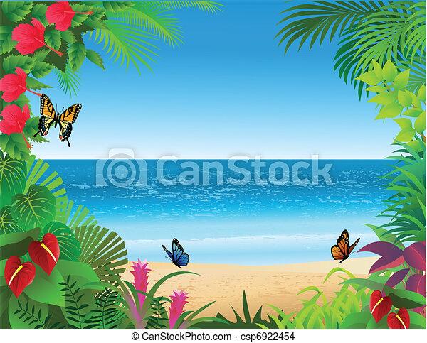 tropical tengerpart, háttér - csp6922454