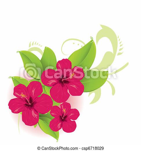 tropical virág - csp6718029
