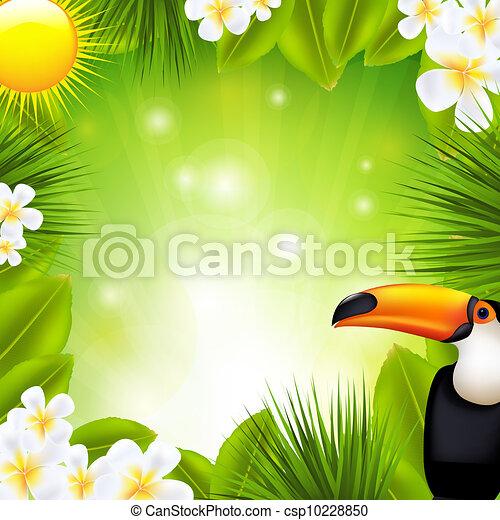 tropikus, alapismeretek, zöld háttér - csp10228850