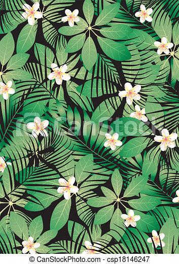 tropikus, frangipani - csp18146247