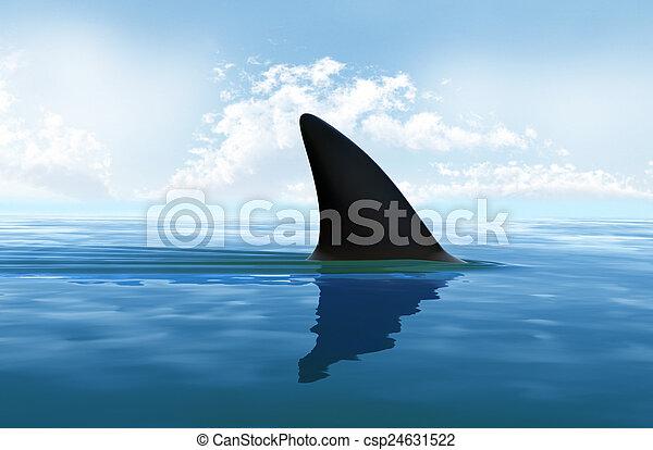 víz, cápa uszony, felül - csp24631522