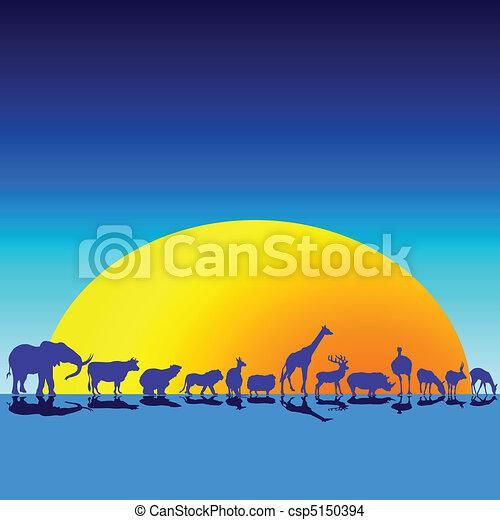 vad állat, félhomály - csp5150394