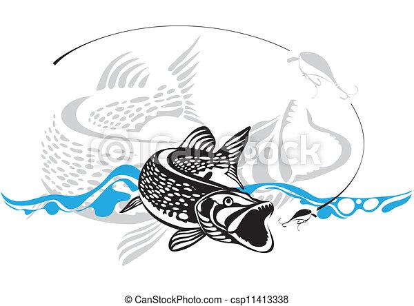 vektor, illustra, halászat, csuka, csábít - csp11413338