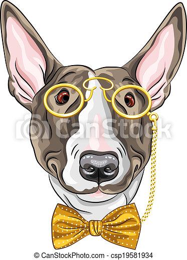 vektor, kutya, csípőre szabott, furcsa, karikatúra, bullterrier - csp19581934