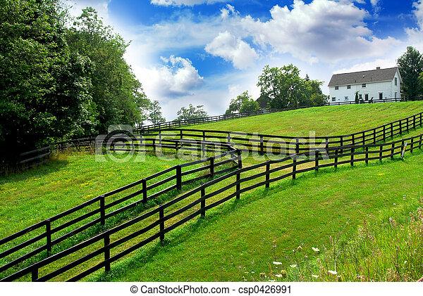 vidéki parkosít, farmház - csp0426991