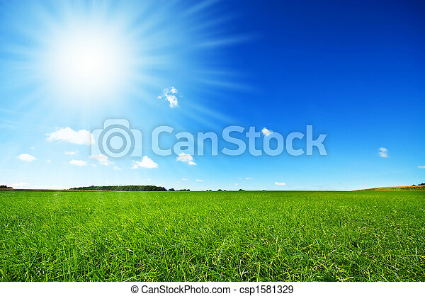 világos blue, friss, ég, fű, zöld - csp1581329