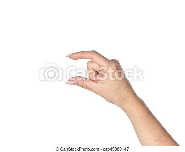 white háttér, női kezezés - csp45883147